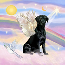 black_labrador_angel.jpg